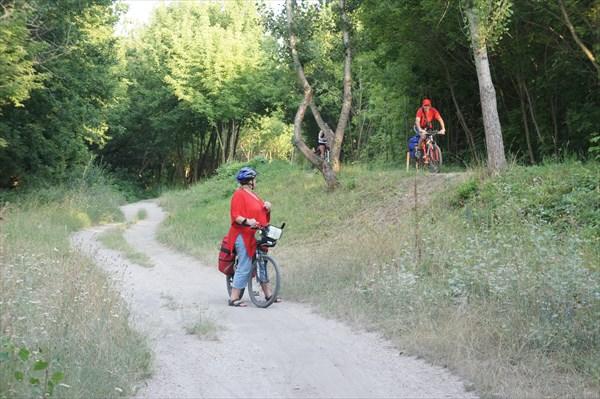 Ф16-велодорожка