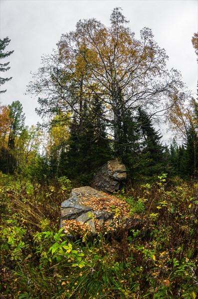 Камень в зоне покоя