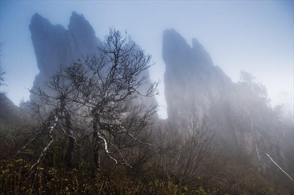 Туманные силуэты 2