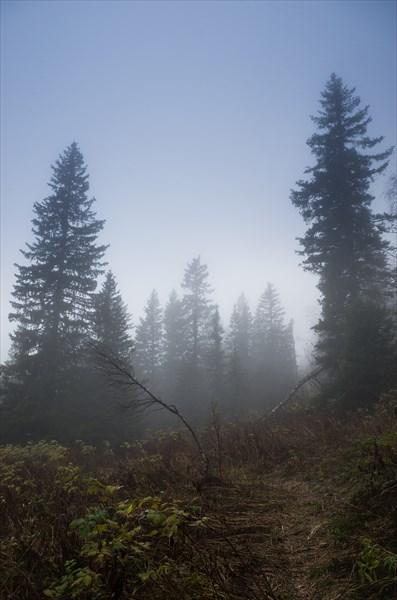 Мгла и туман 3