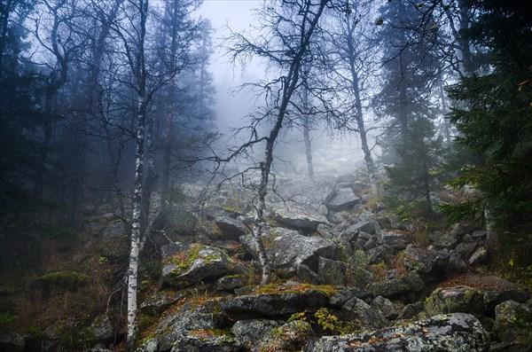Мгла и туман 7