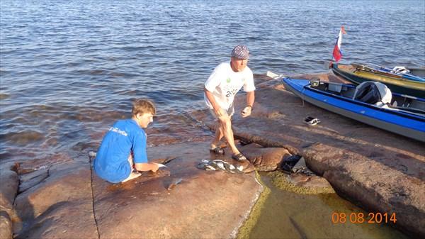 Потрошим камбалу, купленную у рыбаков