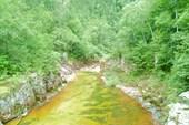Река Милоградовка.
