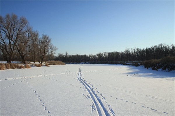 Лыжня на льду.