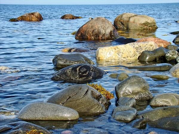 камни Баренцева моря