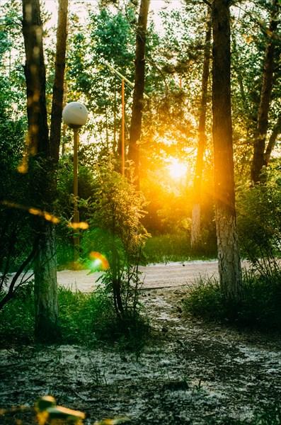 Центральный парк поселка