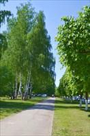 Аллея возле церкви св. Татьяны в Чебоксарах-город Чебоксары