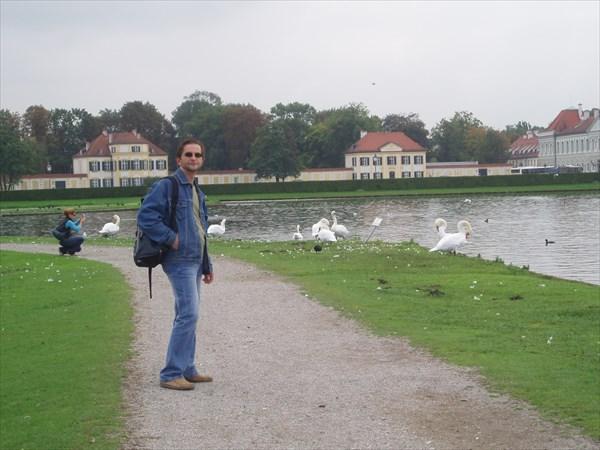 040-Нимфенбург,Лебеди-мутанты