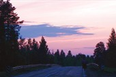 Дорога от Лодейного поля. Начало пути