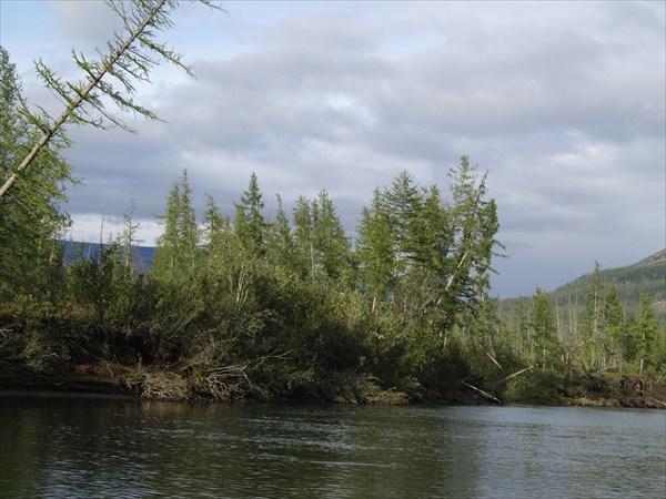 Река Муксун