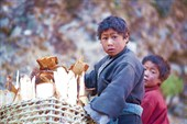 Мальчики тоже работают – например, рубят и носят дрова
