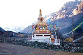 Посреди деревни стоит очень красивая буддистская гомпа