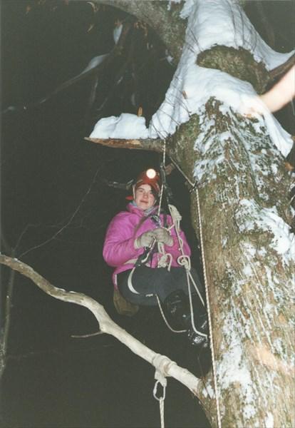 17. Лена на дереве