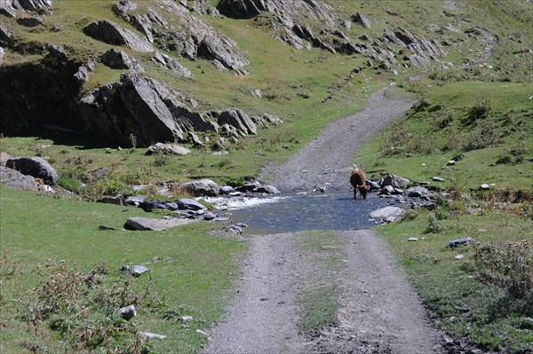 Дорога в Тушетии