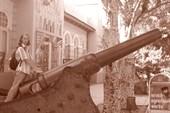 Краеведческий музей, Евпатория