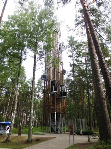 Смотровая башня парка Дзинтари
