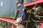 Вадим на ступеньках паровоза