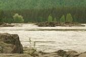 Река Катунь (Фото 2)
