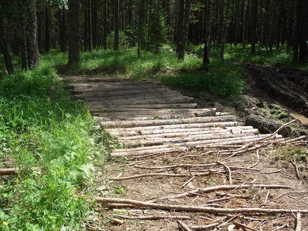 Дорога от Николаевки до кордона на р. Б.Авняр