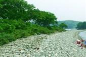 В заливе Славянский. Там дубы