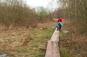 деревенные мостки к деревне Сердюково