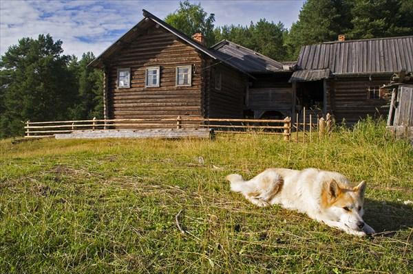 Дом в д. Зехнова.