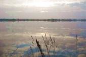 озеро. отражение