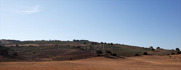 233.Севилья-Малага