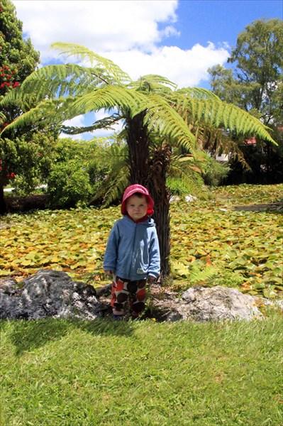 Маленькая Тая под маленькой пальмой