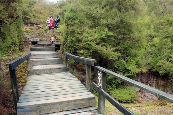 Посетители парка ходят по деревянным мосткам