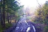 дорога в Веретьево, точнее дорога по болоту