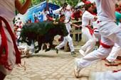 Участники Празднований бегут от быков