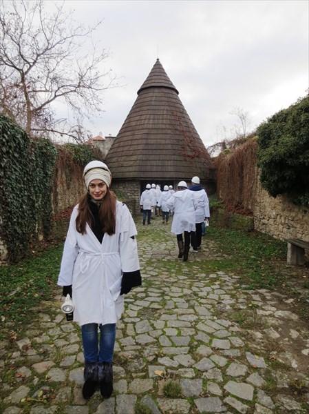 Музей серебра и средневековые шахты Кутна гора