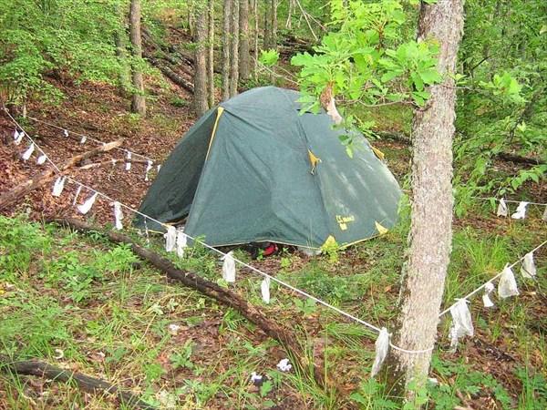 Аварийная стоянка в глухом лесу