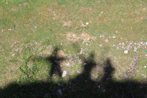 Смотровая площадка на территории Пицундо-Мюссерского заповедника