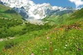 Ущелье горы Шхара