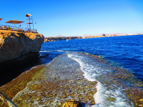 Sharm Reef Beach (Шарм-эль-Шейх)
