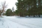 Дорога в Алексеевку.
