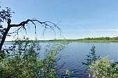 Озеро Сухое