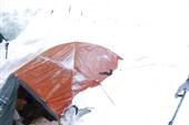 занесенные снегом