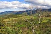 В окрестностях озера Гуатавита