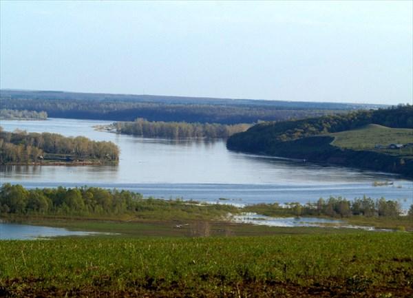 Река Белая в районе города Дюртюли (Башкирия). Весенний разлив.