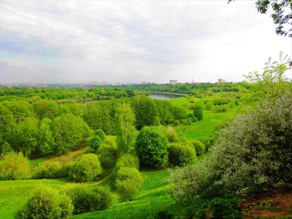 Коломенское, парк