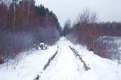 01 дорога уходит вглубь Полесья