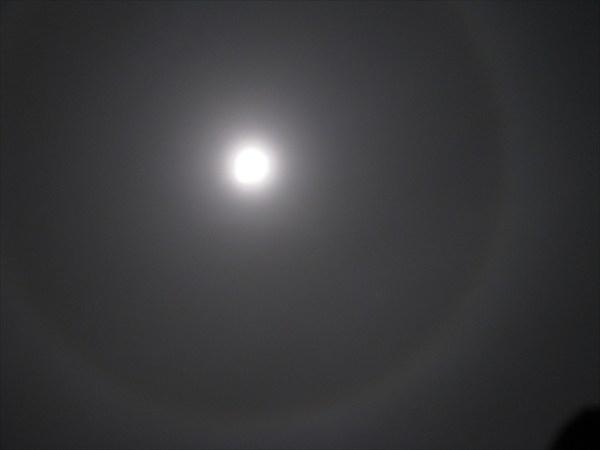 Луна и ориол