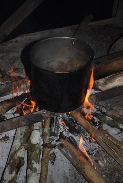 Священный напиток амазонских шаманов