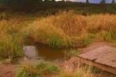 Мосток