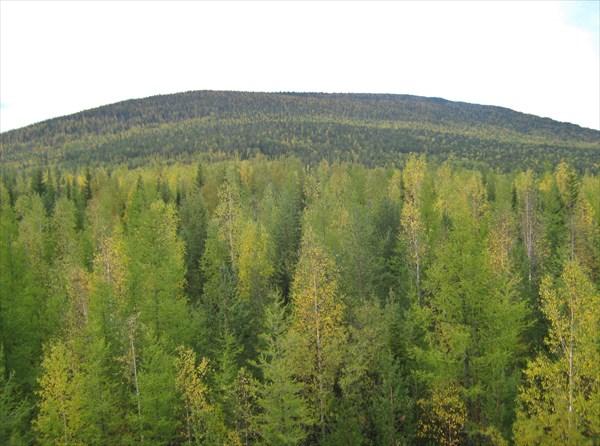 Гора Большая Брусковая.