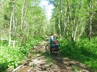 Дорога вдоль озера к п.Зюраткуль