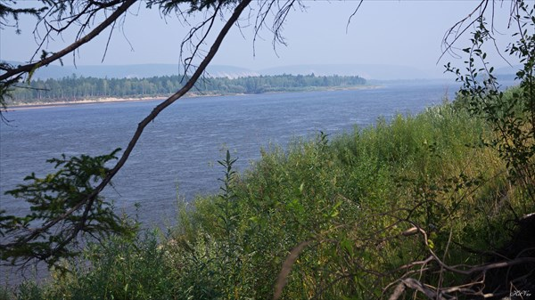 Река Олекма